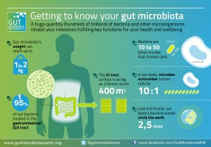 getting to know your gut microbiota